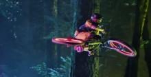 Doğayı LED ile aydınlatan bisikletler | LED PORTALI